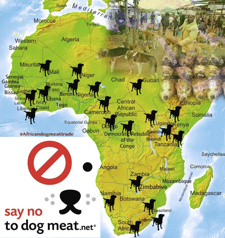 Nigeria: People Dead From Eating Dog Meat
