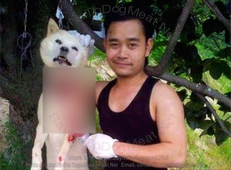 Cambodia: Home Dog Meat Butcher