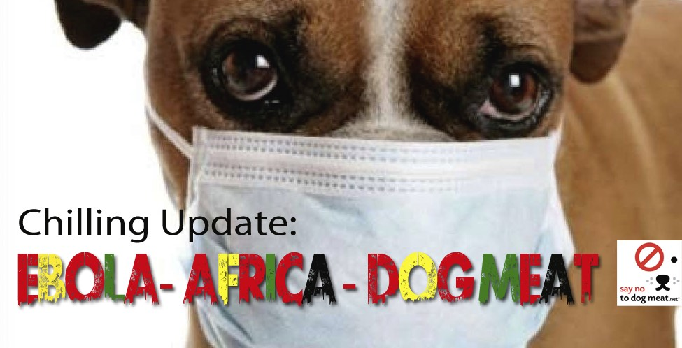 Africa: Dog Meat In Question As Ebola Resurfaces